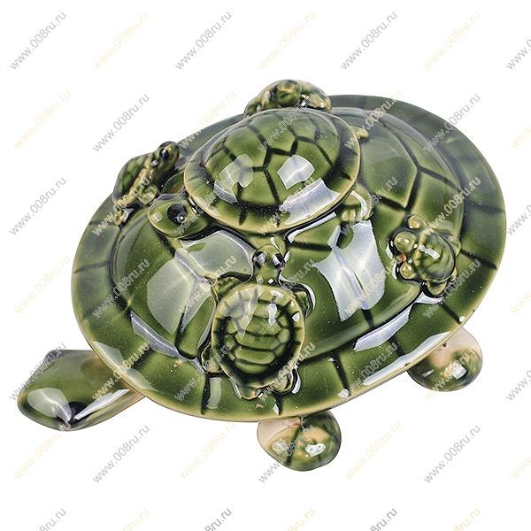 черепаха упаковка оптом